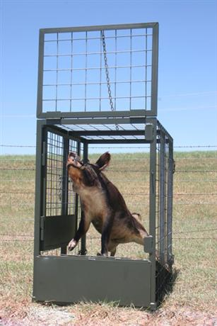 Hog Load Out Door