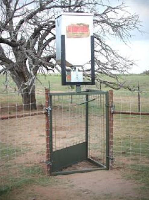 200lb Hog Trap Feeder